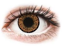 alensa.lt - kontaktiniai lęšiai - ColourVUE Elegance Brown - be dioptrijų